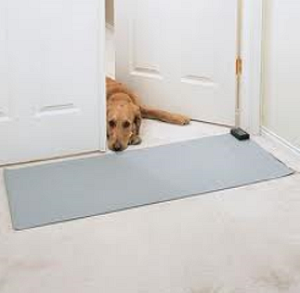 Scat mats deter dogs urine marking indoors