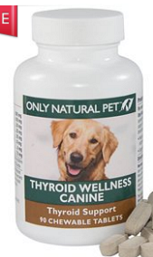 Hypothyroidism and your dog